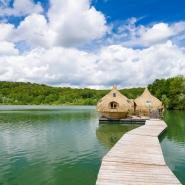 Coucoo construit son nid en Ariège