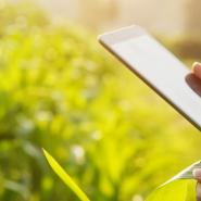 L'internet des objets au service de l'agriculture de demain